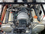Audi 80 B3 + V8 4.2